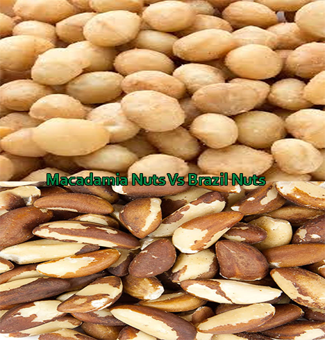 Why nuts and seeds are good? Macadamia Nuts Vs Brazil Nuts