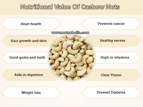 Cashew Nuts – What are nutritional values of cashew nuts?
