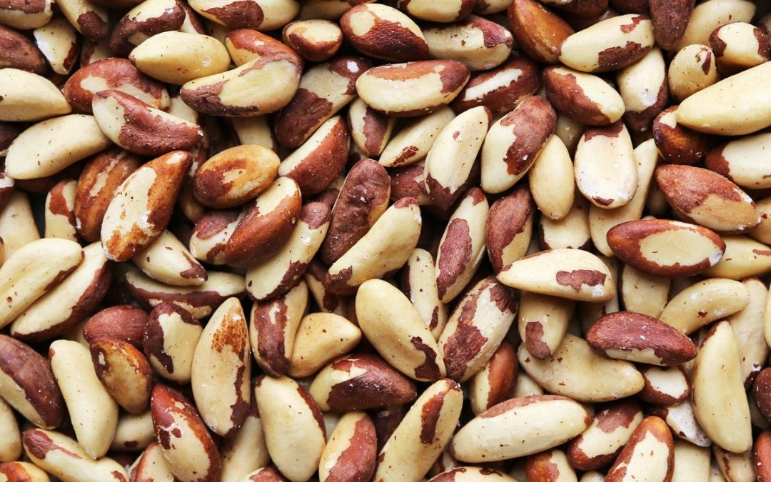 What is an organic product – All you want to know about organic Brazil nuts?